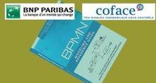 BNP Paribas et Coface adoptent un BPM normalis�
