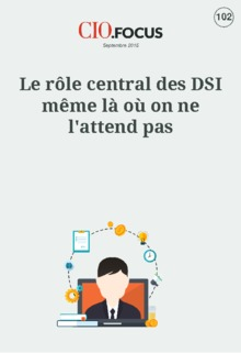 Le r�le central des DSI m�me l� o� on ne l'attend pas