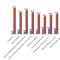 Proportion des dirigeants de moins de 40 ans et de plus de 50 ans dans les entreprises françaises de l'IT et des télécoms (Cliquez sur l'image pour l'agrandir)