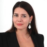 Avant de rejoindre Colt au poste de directrice marketing, Stéphanie Lynch Habib a travaillé à des poste de direction pour Level 3 et AT&T.