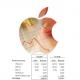Les ventes d'iPhone, iPad et Mac en recul au 1e trimestre 2016