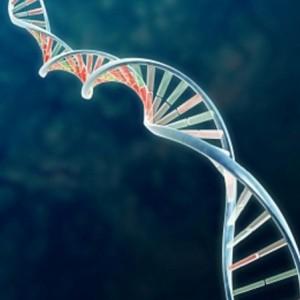 IT : crise ou mutation ?