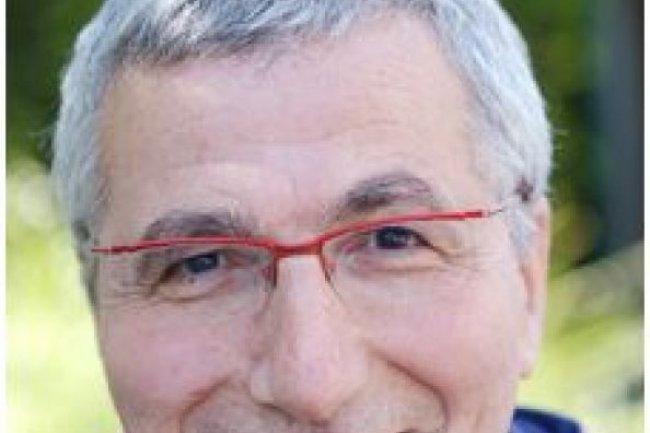 Serge Abiteboul, directeur de recherche à l'Inria et titulaire de la chaire d'Informatique du Collège de France (crédit : D.R.)