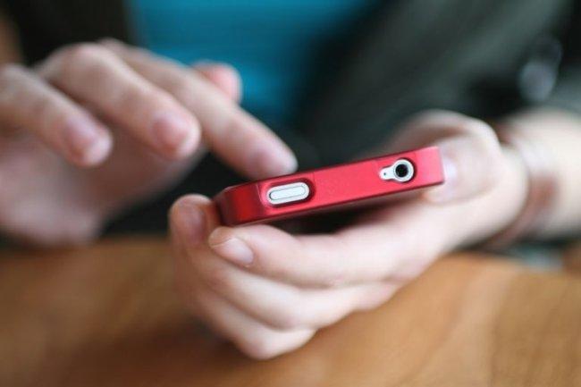 Désormais, 40% des Français ont pris l'habitude de se connecter à internet via les réseaux mobiles. ©D. Hammonds/shutterstock.com