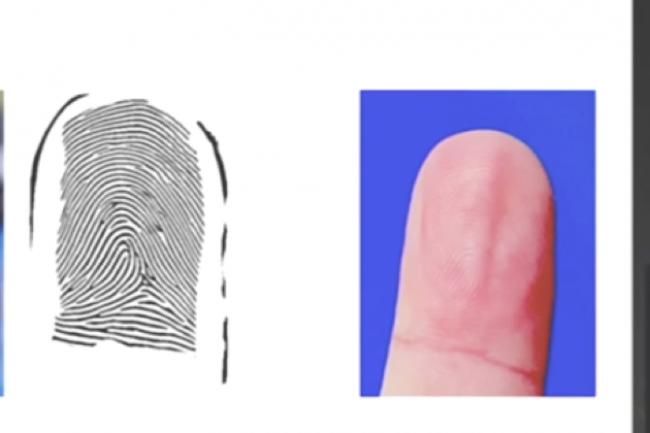 Il suffit de prendre la photo des doigts de la personne ciblée avec un appareil photo classique pour récupérer ses empreintes digitales. (Crédit D.R.)