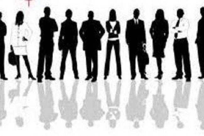 La  moiitié des freelances inscrits sur la plate-forme Hopwork est constituée de développeurs. Crédit: D.R