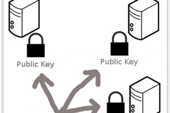 Le chiffrement par clé publique est détourné par des pirates avec les ransomwares. (crédit : D.R.)