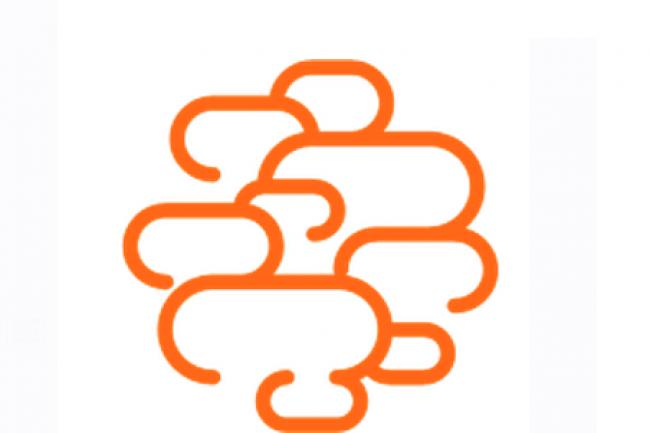 Sans surprise, OBS a remport� l'appel d'offres portant sur le cloud de l'Etat. (Cr�dit D.R.)