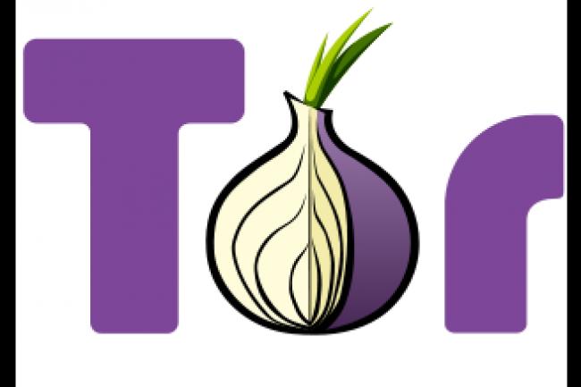 Le réseau mondial d'anonymisation des échanges The Onion Router pense que le FBI est derrière l'attaque dont il a été victime en 2014. (crédit : D.R.)