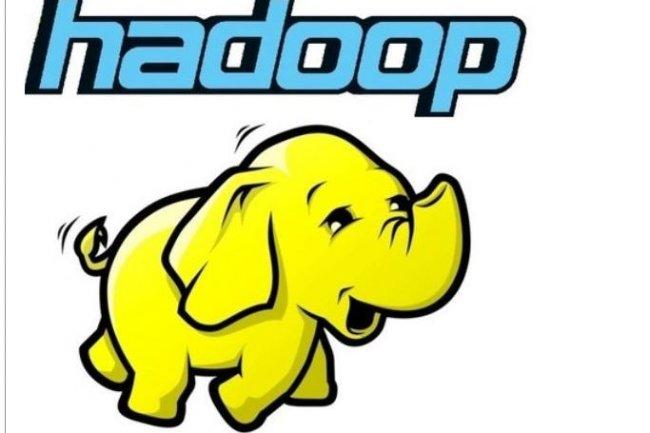 Dans son dernier rapport Wave sur le Top 5 des distributions Hadoop, Forrester met en avant les diff�rences d'approche, mais le choix reste difficile. (cr�dit : D.R.)