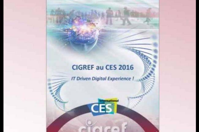 L'e-book publié par le Cigref est disponible en ligne. (crédit : D.R.)