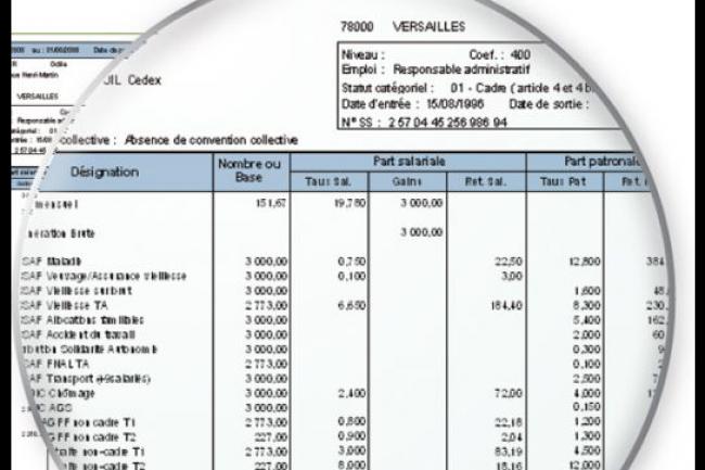 Si le projet de loi concernant les bulletins de paye dématérialisés passe, les salariés devront expressément le demander pour le recevoir sur papier après le 1er janvier 2017. (crédit : D.R.)