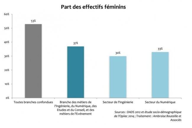 L'�tude publi�e par Syntec Num�rique � l'occasion de la journ�e internationale des droits des femmes souligne une f�minisation durablement trop faible dans les m�tiers du num�rique. Cr�dit: D.R