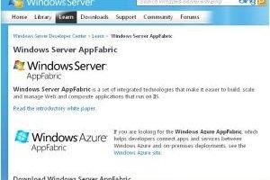 BizTalk et AppFabric, pour 'composer' des applications ouvertes vers le cloud