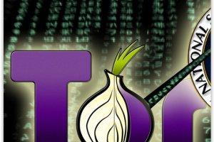 Tor : Saisie de serveurs pour neutralisation en vue