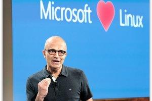 Big data : Microsoft rach�te Revolution Analytics