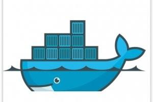 Docker l�ve 95 millions de dollars