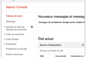 Les pirates du SEO s'attaquent � Google Search Console