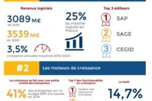 Le march� fran�ais de l'ERP d�passe 3 Md€ de revenus