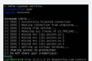 Une faille capable de bloquer le malware DDoS Mirai