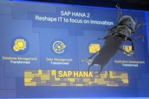 Plusieurs failles critiques à corriger rapidement dans SAP HANA