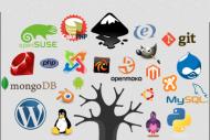 Le secteur du logiciel libre poursuit son envol�e