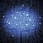 Le machine learning s'engouffre dans les entreprises