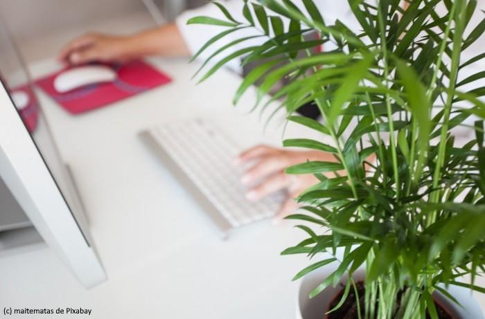 La Digital Workplace fait évoluer les pratiques de travail