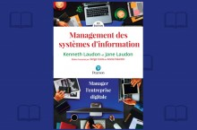 Le manuel pratique du DSI