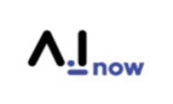 Metz  : A.I_Now