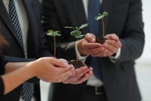 Comment les entreprises se mobilisent et innovent pour la protection de l'environnement ?