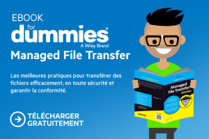 Comment gérer le transfert de fichiers en toute sécurité?