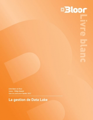 La gestion de Data Lake