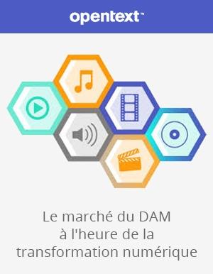 Levez le barrage de la gestion des contenus avec le DAM