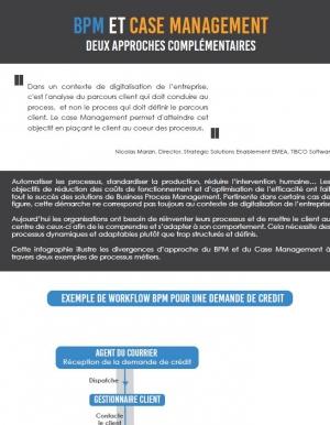Infographie BPM ET Case Management
