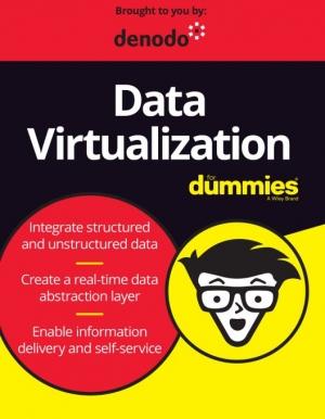 E-book : la data virtualisation pour les nuls