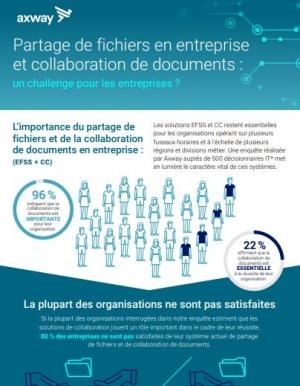 Partage de fichiers en entreprise et collaboration de documents : un challenge pour les entreprises ?