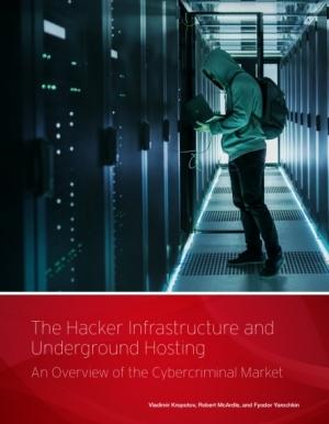 L'utilisation des services d'hébergement souterrains par les organisations criminelles (texte en anglais)