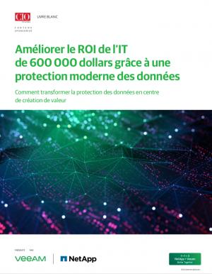 Sauvegarde et protection des données: comment améliorer le ROI de l'IT grâce à la data protection?