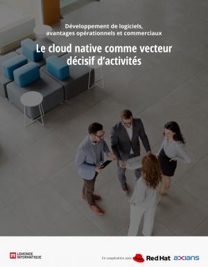 Le cloud native comme r�volution de l'organisation et processus business des entreprises.