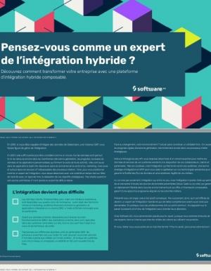 Pensez-vous comme un expert de l'int�gration hybride ?