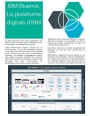 IBM Bluemix, La plateforme digitale d'IBM
