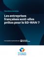 Enqu�te : les entreprises fran�aises sont-elles pr�tes pour le SD-WAN ?