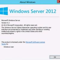 Août - Les partenaires Microsoft ont accès à Windows RTM 8