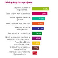 Les moteurs des projets big data mis en avant dans l'étude du cabinet Vanson Bourne. (crédit : D.R.)