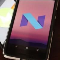 Après Android Nougat 7.0, les paris sont ouverts pour trouver la friandise qui sera utilisée par Google pour Android 8.0. (crédit : D.R.)