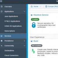 Avec plus de 100 solutions cloud disponibles, la SAP Cloud platform donnera à l'écosystème de l'éditeur un accès plus rapide aux ressources disponibles dans le cloud. (Crédit : SAP)