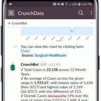 Crunch Bot repose sur le framework open API et sur Qlik Associative Engine. (crédit : Crunch Data)