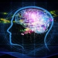 L'apprentissage semi-supervisé trouve sa place