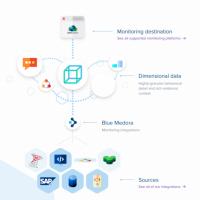 La suite True Visibility comprend divers packs d'administration qui aident à rendre vRealize Operations plus utile. (Crédit Blue Medora)